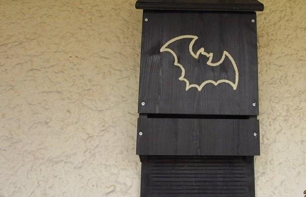 Kućica za šišmiše / bat-house