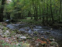 croatia-vacation-kupa-river- (39)